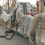 nets-drying-in-the-harbour