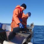 swedish-scientists-on-lake-vattern