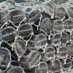 crab-baskets