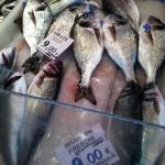 fresh-seabass-in-th-market