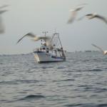 a-fishing-vessel-off-the-coast-of-chioggia-italy