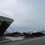 pelagic-trawlers-in-fraserburgh