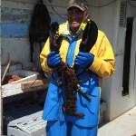 jumbo-lobster