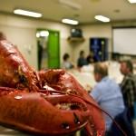 lobsterdinner