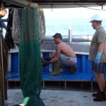 emptying-the-net