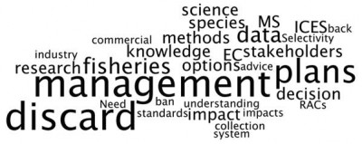 Wordle from ICES WG on Maritime Systems