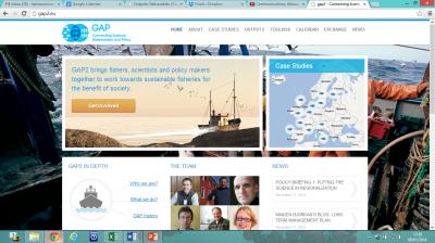 5 GAP website