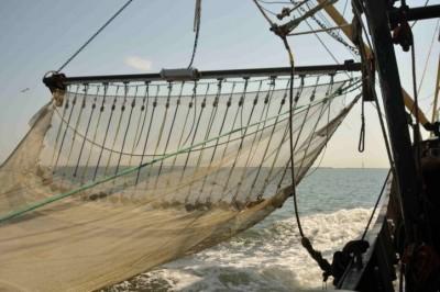 16. Trawling underway...