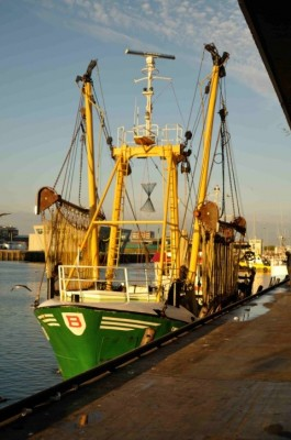 15. A pulse trawler in the Dutch fleet